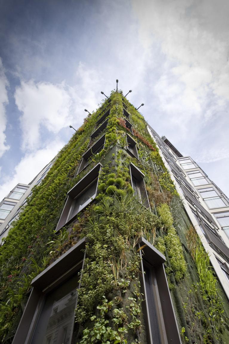 L'oleandro elettrico e l'architettura vegetale