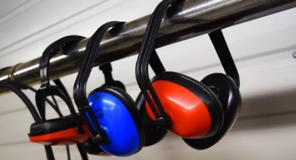 Relazione sullo stato acustico dei Comuni, disciplina dei contenuti