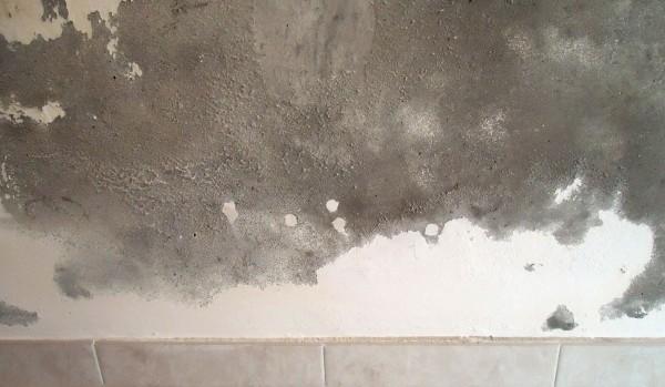 Il dispositivo contro muffa e umidità dai muri di casa