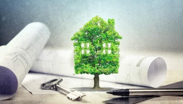 Case ecologiche: come costruirne una con 5 pratici suggerimenti