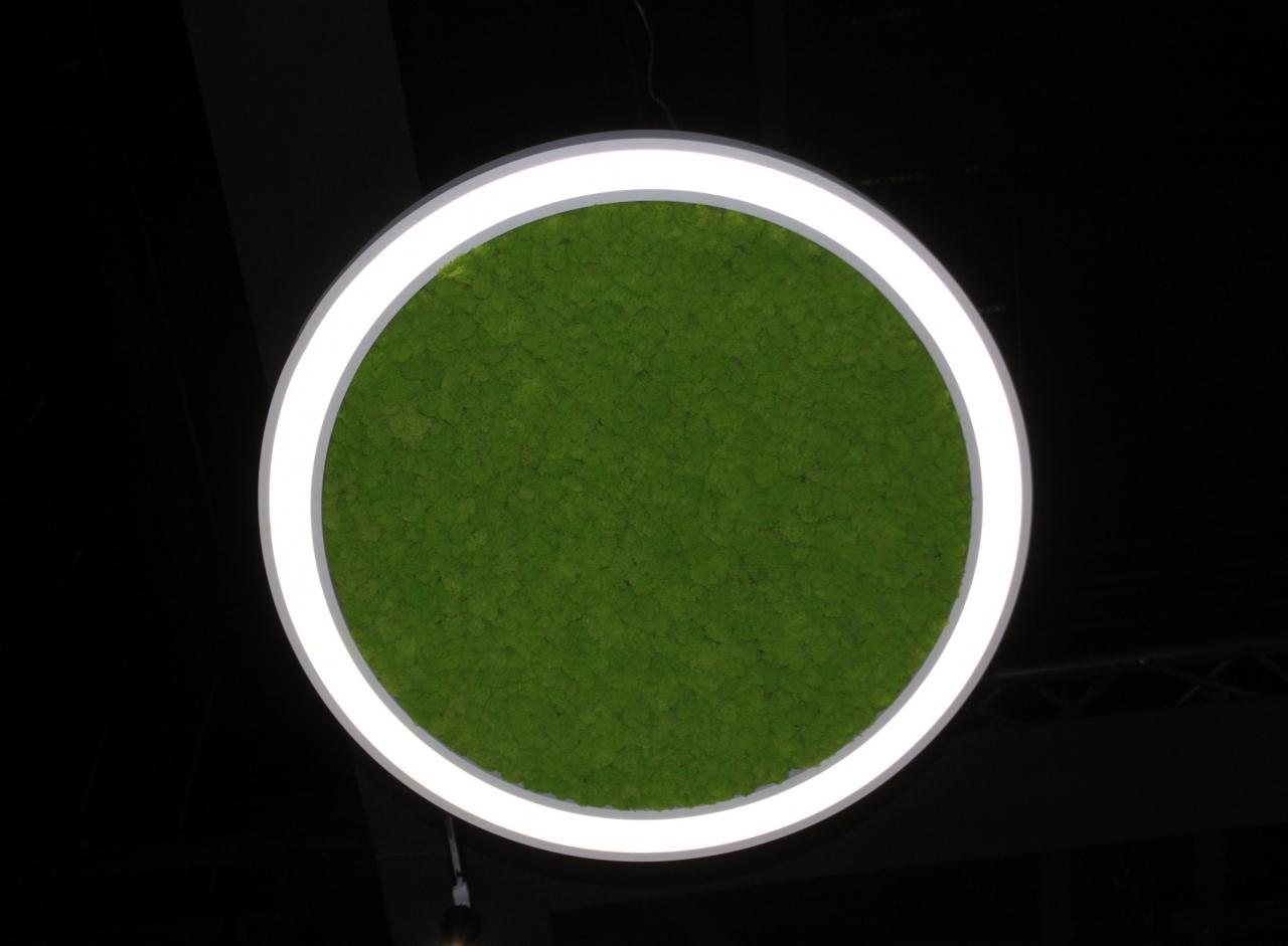 extra_green_1_1
