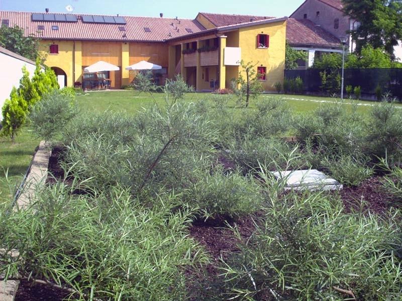 Geofilter Bacino di fitodepurazione integrale - I trattamenti di fitodepurazione sono trattamenti di tipo biologico nei quali le piante, che si sviluppano favorevolmente in terreni umidi, hanno un ruolo chiave nelle depurazione delle acque reflue.  Negli impianti di fitodepurazione vengono ricostituiti artificialmente degli habitat naturali, nei quali hanno modo di svilupparsi quei fenomeni biologici naturali che permettono la depurazione delle acque da trattare. La rimozione degli inquinanti avviene attraverso una complessa varietà di processi biologici, chimici e fisici. Tra questi, riveste un ruolo predominante la cooperazione tra le piante ed i microrganismi, che trovano sulle piante stesse, un habitat adatto al loro sviluppo.  Con la fitodepurazione si sono ottenuti ottimi risultati anche per quel che riguarda l'abbattimento di sostanze scarsamente biodegradabili, quali idrocarburi clorurati, fosfati, metalli pesanti e germi patogeni.  A monte del sistema di fitodepurazione va sempre prevista l'installazione di pretrattamenti, consistenti generalmente in un sedimentatore primario (vasca a tre camere, Imhoff, condensagrassi).  Ambito di utilizzo:  Trattamento reflui civili provenienti da piccole comunità,  Trattamento reflui industriali.
